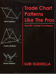 Siri Dudella Trade Chart Patterns like the Pros